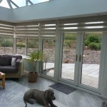 Vision Rollers in Conservatory