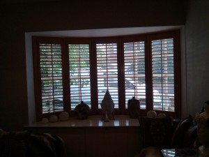 Lovely stained natural wood shutters